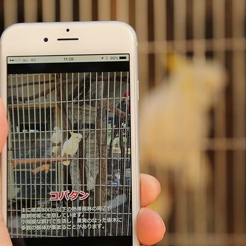 夢見ヶ崎動物公園アプリ