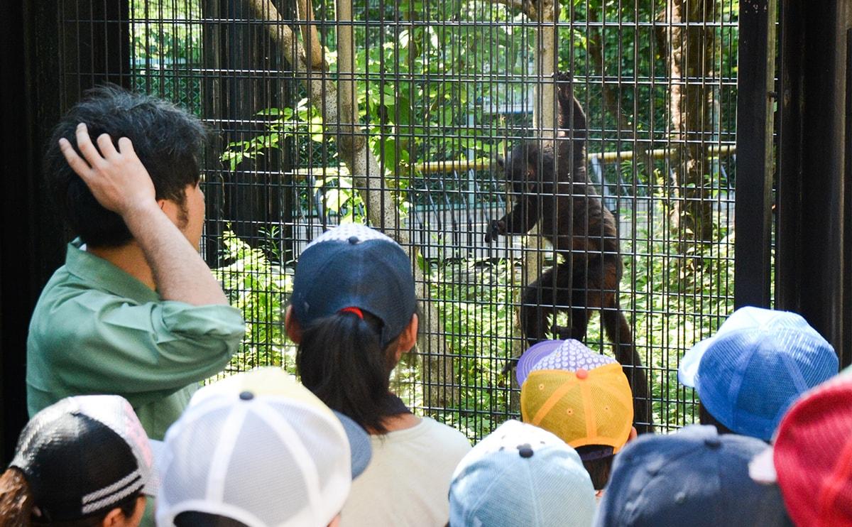 8月1日開催予定の「夏休み親子動物愛護教室」参加者募集!
