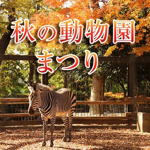 秋の動物園まつり